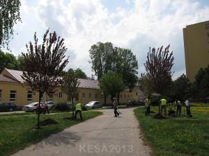 KESA2013-009