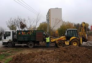 SadenieStromcekovKVP9